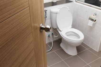 toilet repair installation